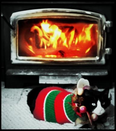 festivekate